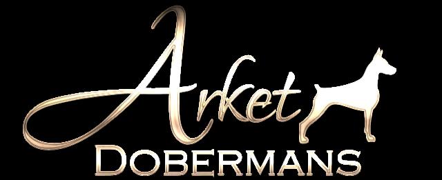 Arket Dobermans